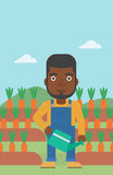 Farmer with watering can. An african-american man holding a watering can on the background of carrots growing on field vector flat design illustration. Vertical Stock Image