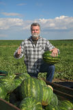 Farmer and watermelon Royalty Free Stock Photography