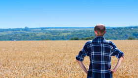 Farmer in wheat field. Checking his harvest Stock Photography