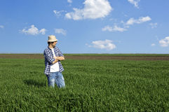 Farmer in a wheat field. Against blue sky Royalty Free Stock Photos