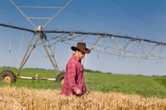 Farmer in wheat field. Farmer with cowboy hat standing in wheat field, irrigation system in background Royalty Free Stock Photos