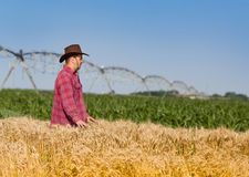Farmer in wheat field. Farmer with hat standing in wheat field with irrigation system in background Royalty Free Stock Images