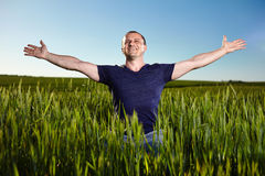 Farmer in a wheat field. Farmer with his arms raised in a wheat field, happy about his crops Royalty Free Stock Photo
