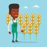 Farmer in wheat field vector illustration. Royalty Free Stock Photos