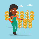 Farmer in wheat field vector illustration. Royalty Free Stock Image