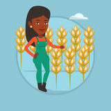 Farmer in wheat field vector illustration. African-american farmer working in wheat field. Farmer standing on the background of wheat field. Farmer checking Royalty Free Stock Image