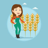 Farmer in wheat field vector illustration. Royalty Free Stock Photo