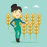 Farmer in wheat field vector illustration. Royalty Free Stock Photo