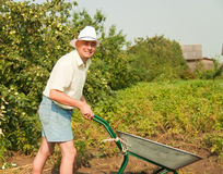 Farmer with wheelbarrow stock image