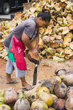 Farmer woman cleans coconuts Stock Photography