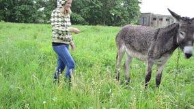 Farmer woman donkey feed stock footage