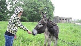 Farmer woman donkey feed stock video footage