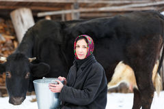Farmer woman milking a cow in winter yard Stock Photo