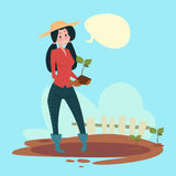 Farmer Woman Plant Tree Eco Farming. Flat Vector Illustration Stock Photography