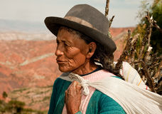 Farmer Woman, South America Stock Photo