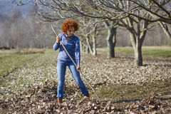 Farmer woman spring cleaning with a rake Stock Images