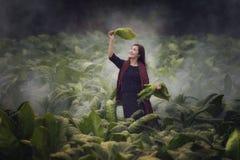 Farmer woman. With tobacco farm stock photos