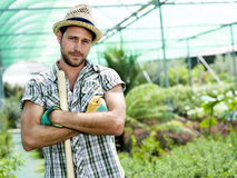 Farmer work in a greenhouse. In spring Royalty Free Stock Photo