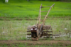 Farmer worke for Thailand. Thai peasant agriculture Farmers are working Stock Photos