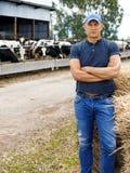 Farmer working on farm with dairy cows. Farmer is working on farm with dairy cows royalty free stock photos