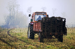 Farmer working Royalty Free Stock Image