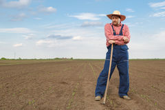 Farmer. Working in the field Stock Image