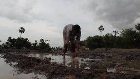 Farmer working in the Fields stock footage