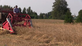 Farmer working with old grain harvester combine in farm field stock video footage