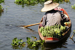 Farmer working sailing on small boat for selling organic fresh banana at river of floating market Stock Photos