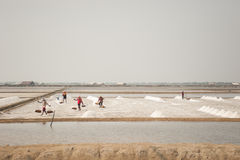 Farmer working at Salt pile in ThailandHUAHIN, THAILAND - MAY 13, 2008: Unidentified people carry salt at the salt farm in Huahin, Royalty Free Stock Images