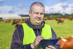 Farmer writing near the cows at pasture. On a sunny day stock photo