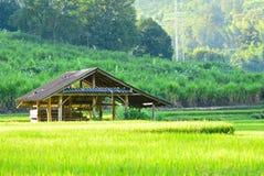 Farmer& x27 ; cottage de s placé au milieu du champ Photos stock