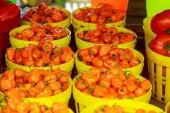 farmer& x27 ; marché de s vendant des poivrons Images libres de droits