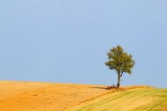 Farmer& x27; s pole krajobrazu rolniczego Zdjęcie Stock