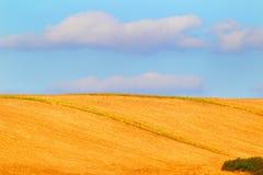 Farmer& x27; s pole krajobrazu rolniczego Obrazy Stock