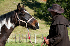 Farmer with young horse Royalty Free Stock Images
