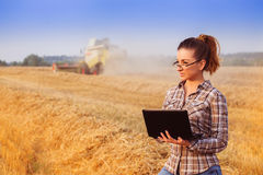 Farmergirl girl in wheat field with notebook. Young pretty farmer girl in glasses with hair tied in a ponytail to screw up one's eyes in wheat field while Royalty Free Stock Image