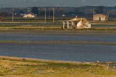 Farmerhouse w ryżu polu Zdjęcia Royalty Free
