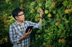 Farmers attractive young man with a laptop Stock Photography