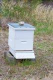 Farmer's Bee Hive Stock Photo