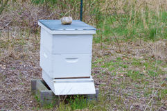 Farmer's Bees Hive Stock Photo