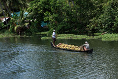 Farmers bring coconut  in bulk on wooden boat for selling purpose Royalty Free Stock Photography