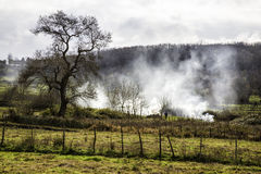 Farmers burn wild bushes in a foggy morning Stock Images