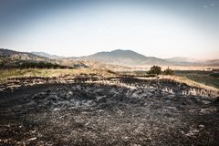Farmers burned their crops after harvest. Burned after harvest, Thai farmers royalty free stock images