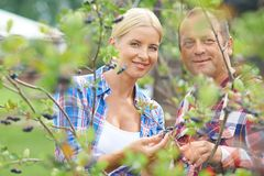 Farmers in bush Stock Photography