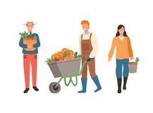People with Harvest, Harvesting Season at Farm. Farmers busy with work vector, man carrying gathered carrots in woven basket, male pushing carriage with pumpkins vector illustration