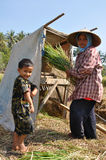 Farmers family. Woman and kid during extracting the rice on manual machine. Lombok, Indonesia Royalty Free Stock Photos