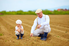 Farmers, family on their land, checking plant growth Royalty Free Stock Images