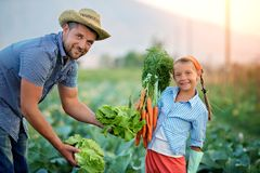 Farmers royalty free stock photography