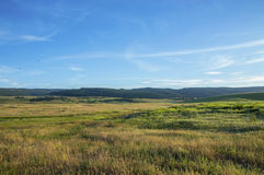Farmers fields. In summer day Royalty Free Stock Image